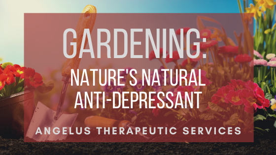 How Gardening Can Treat Depression And Anxiety