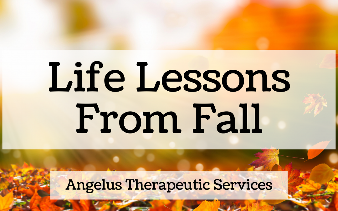 5 Ways Fall is Good for the Soul
