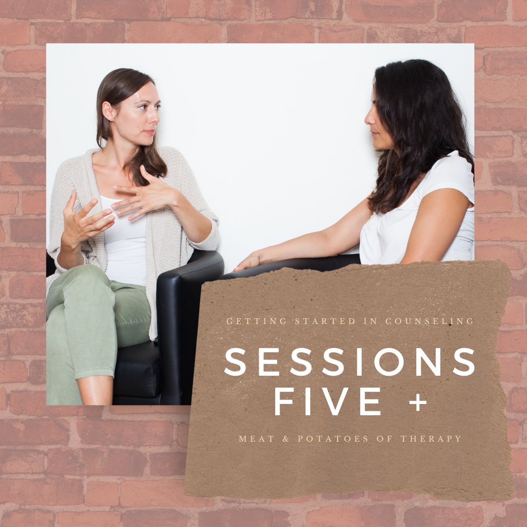 sessions 5+ meat and potatoes of therapy